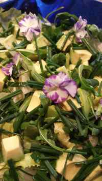 Salad with avocados, green beans and violets